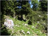 Pod Peco/Koprein-Petzen - bistriska_spica_feistritzer_spitze