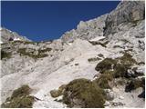 Cave del Mole - Koštrunove špice