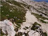 Konec ceste na Pokljuki - Vrh Snežne konte