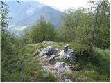 Spodnja Kokra - javorov_vrh