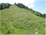 Planina pod Golico - golica