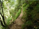 Dom Planincev v Logarski dolini - Krofička