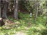 Velacher Kotschna/Belska Kočna - Goli vrh