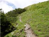 Ravenska Kočna - goli_vrh