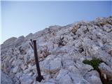 Dolina Kot - rjavina