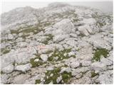 V Koncu - turska_gora