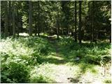 Planina Blato - koca_na_planini_pri_jezeru