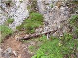 Ravenska Kočna - Kranjska koča na Ledinah