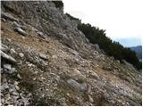 Rudno polje - veliki_selisnik