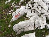 Rudno polje - debeli_vrh_nad_lipanco