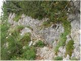 ravenska_kocna - Kranjska koča na Ledinah mountain hut