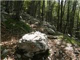 Tolminske Ravne - vrh_planje_nad_globokim