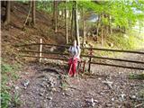 Rute (Zavrh) / Bärental - struska