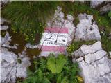 Pecol - Cima di Terrarossa