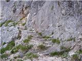 Kokra (Podlebelca) - kalski_greben
