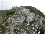Spodnje Sleme - govca_olseva
