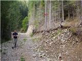 Rudnik v Topli - koncnikov_vrh