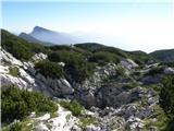 Jamarski bivak na Dleskovški planoti