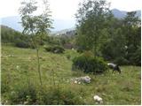 Planina Kuninja - jezero_v_luznici