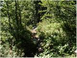 vrsic - Zavetišče pod Špičkom mountain hut