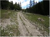 Pod Krnico - planina_zgornja_dolga_njiva