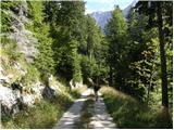 Vas na Skali - planina_v_plazeh