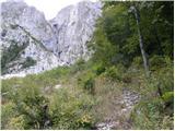 dreznica - Krn