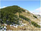 Tolsti vrh (Veža)