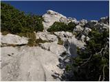 Konec ceste na Pokljuki - veliki_draski_vrh