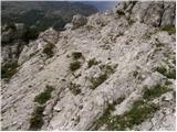 Uskovnica (Razpotje) - vrh_snezne_konte
