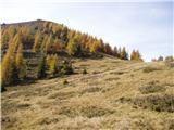 Planina Dolnica / Dolinza Alm - konjscica_sagranberg