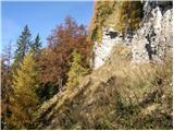 Planina Vetrh - stegovnik