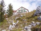 Mače - baseljski_vrh