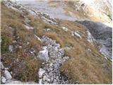 Rifugio Tolazzi - Monte Capolago / Seekopf