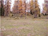 Zapornica (Belca) - Maloško poldne / Mallestiger Mittagskogel