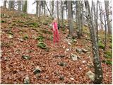 Štufna - Veliki Rog