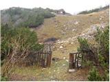 Dom Trilobit - Kamnitnik