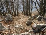 Potoki - stol_julijske_alpe