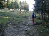 Matizovec - Zavetišče na planini Šija