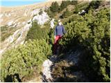 dolina - Kofce gora