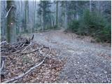 Dom planincev Farbanca - tolsti_vrh_dobrovlje