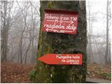 Rašica - rasica_vrh_staneta_kosca