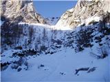 Dolina Krma - veliki_prsivec