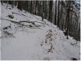Selca - miklavska_gora