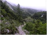 Pod Debelo glavo - planina_suha