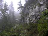 Vodel - lovska_koca_na_glinu