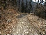 Trbovlje - crni_vrh_cemseniska_planina