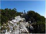kranjski_rak_ - Gradišče (Velika planina)