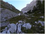 Dolina Krma - smarjetna_glava