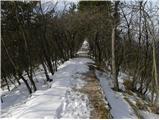 Sveta Gora - franciskov_hrib